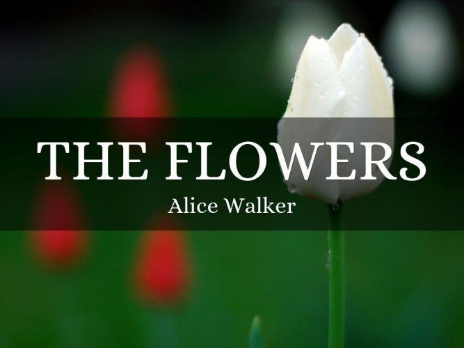 Flowers, Alice Walker