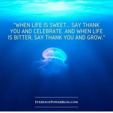 gratitude quotes life grow