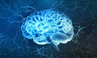 11 Ways You Can Use Neuro-Associations to Increase Productivity