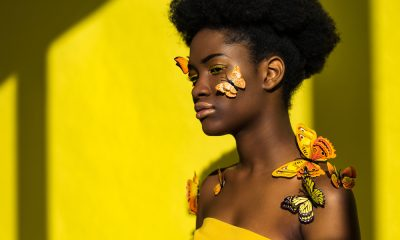 How You Can Use The Butterfly Effect To Create Massive Change In Your Life