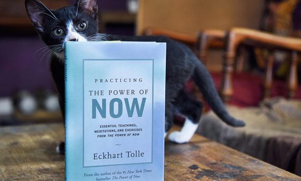 25 Inspirational Eckhart Tolle Quotes About Life, Love and The Power Of Now