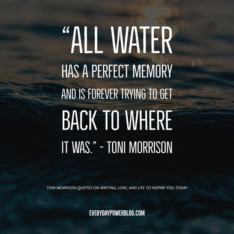 55 Toni Morrison Quotes on Writing, Love, & Life (2019)