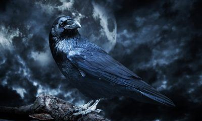 Inspirational Edgar Allan Poe Quotes about death