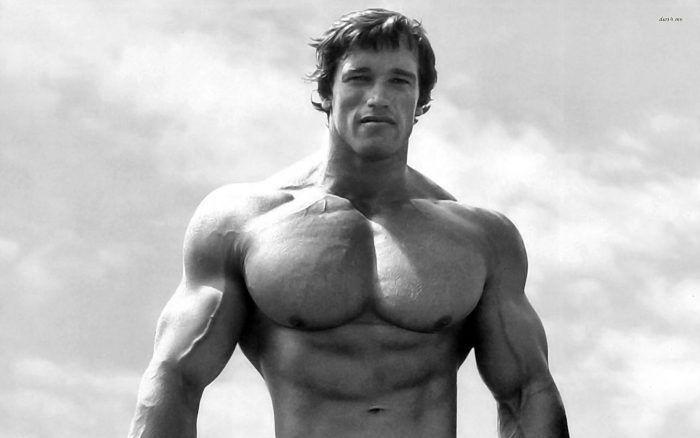 47 Arnold Schwarzenegg...