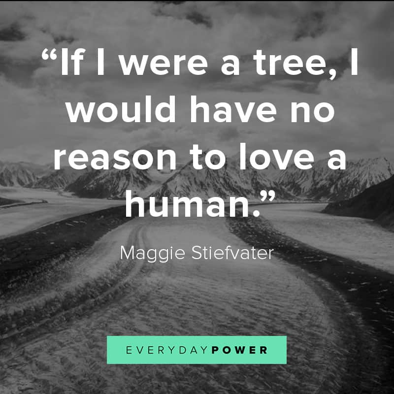 Inspirational nature quotes to help you reconnect with Mother Earth