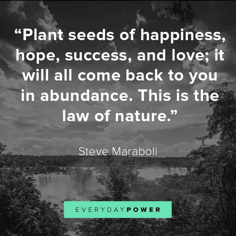 95 Nature Quotes About Mother Earth S Beauty 2019