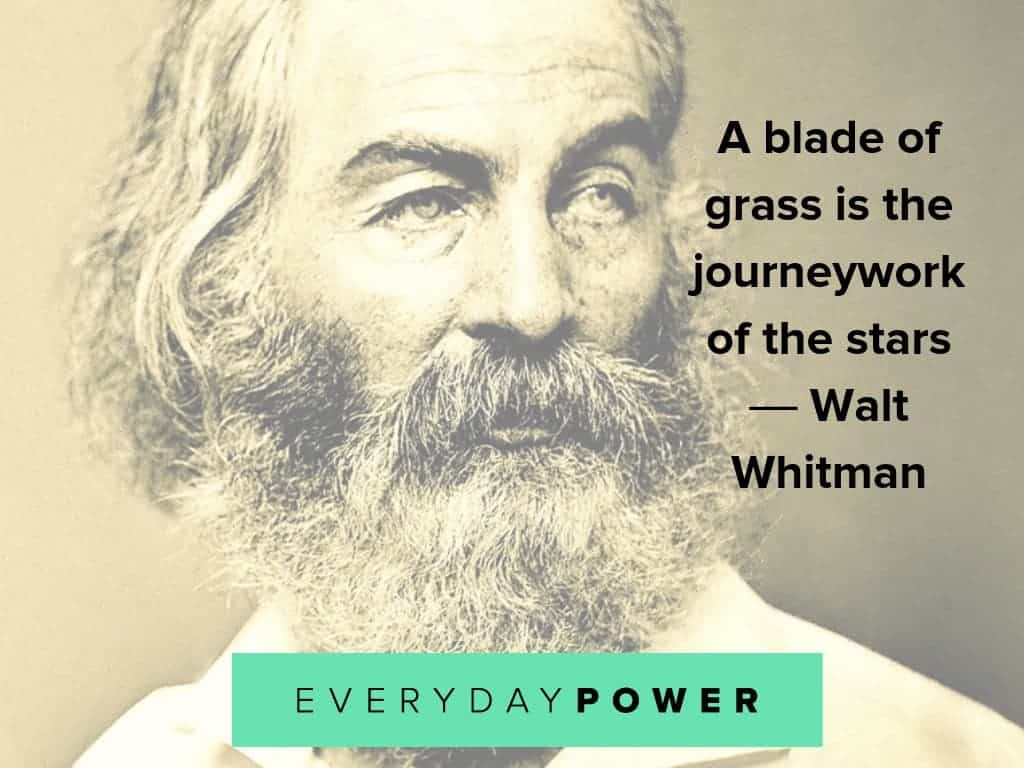 walt whitman quotes about stars