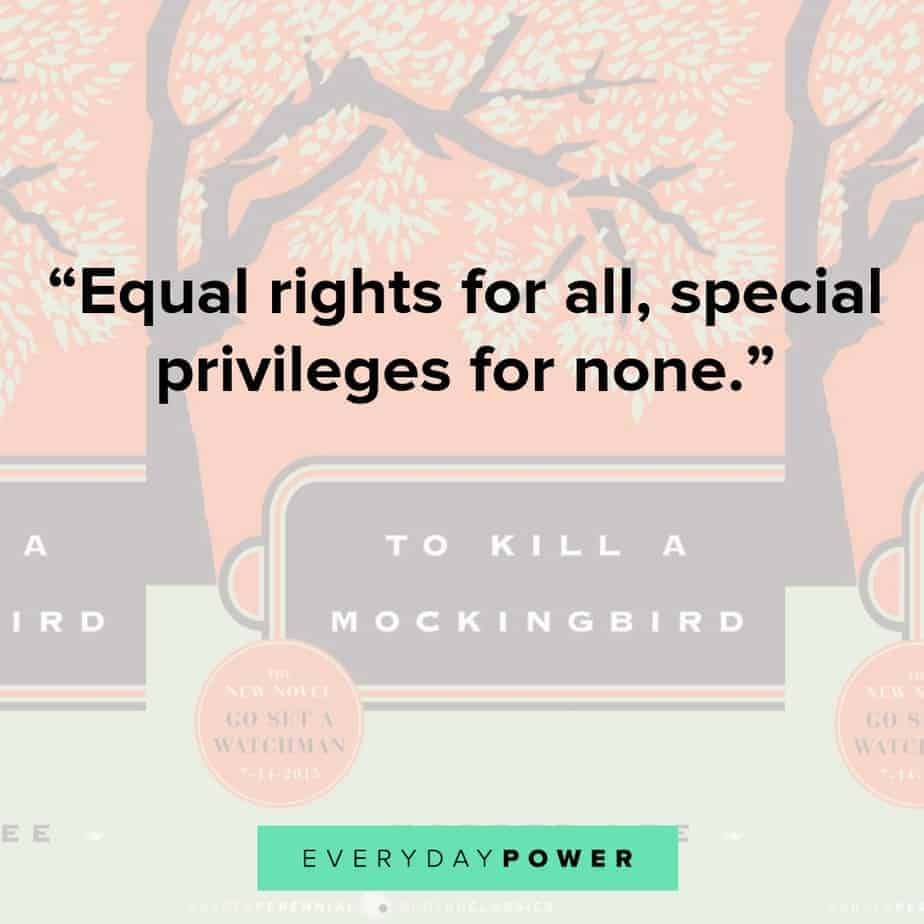 to kill a mockingbird quotes about equal rights