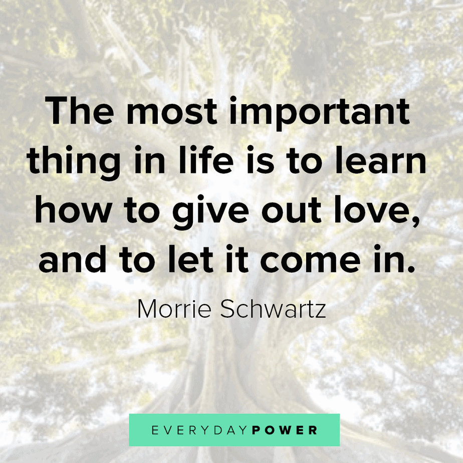 165 Life Quotes To Live By On Success And Love 2020