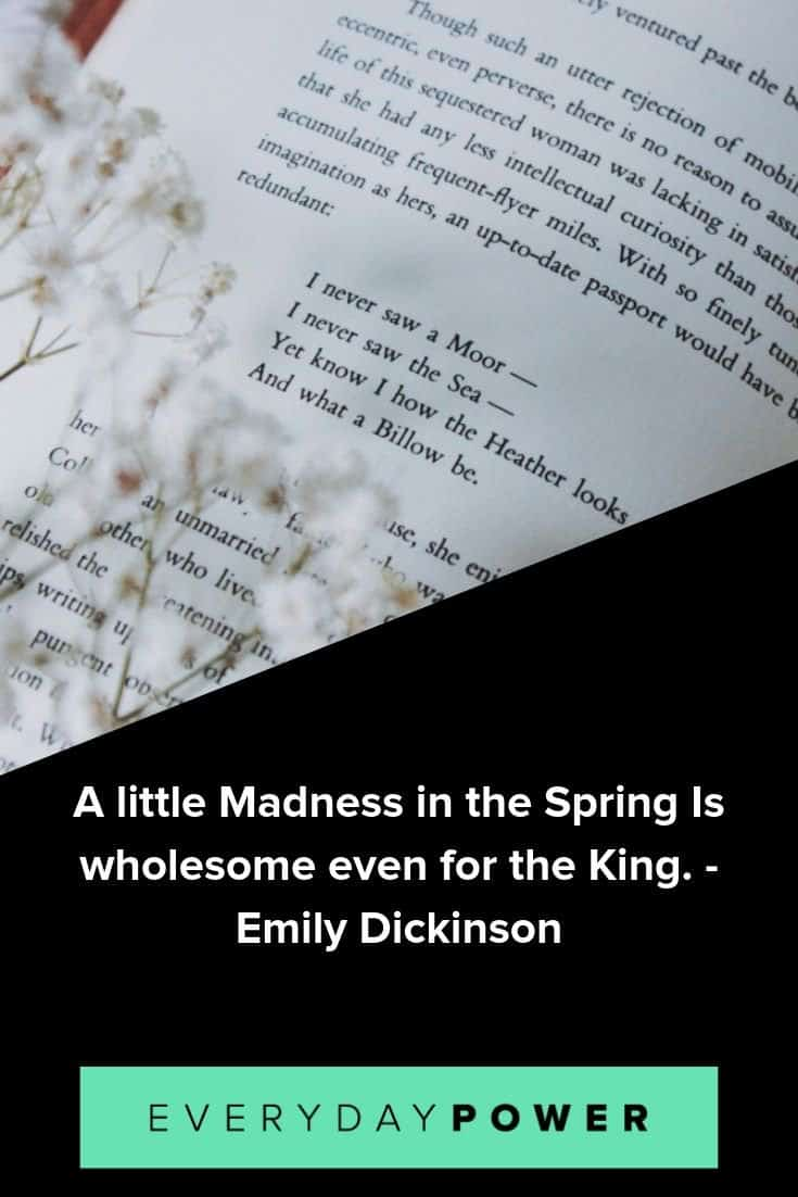 Emily Dickinson quotes to help you savor the richness of life