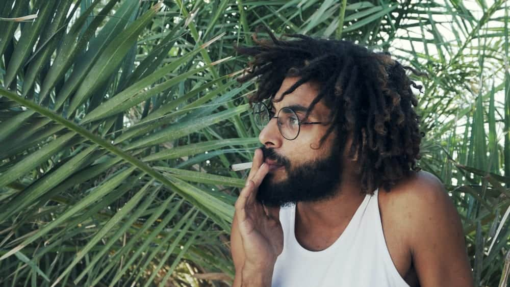 50 Weed Quotes to Lift Your Stoner Spirits