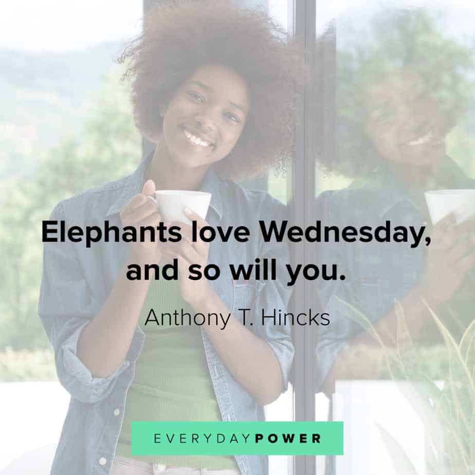Wednesday Quotes on why you should love it