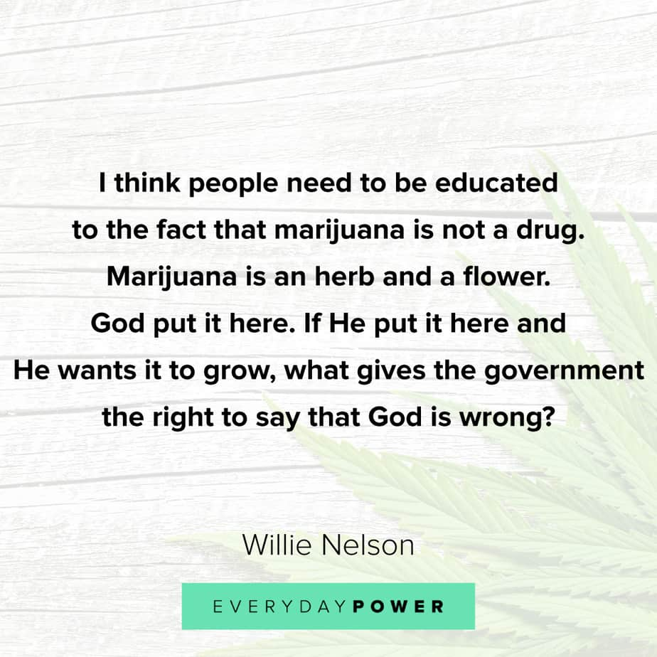 Weed Quotes about the herb