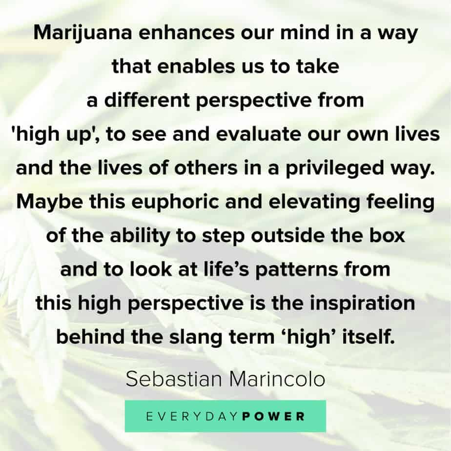 Weed Quotes about our minds