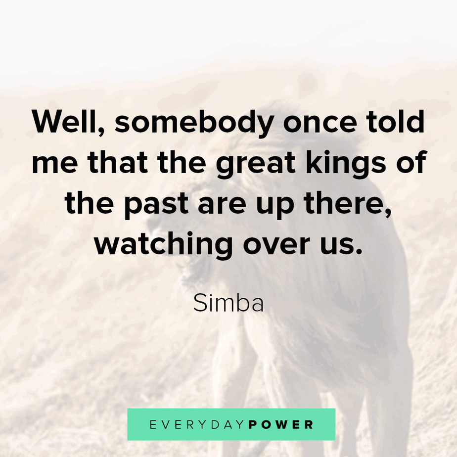 lion king quotes about the kingdom