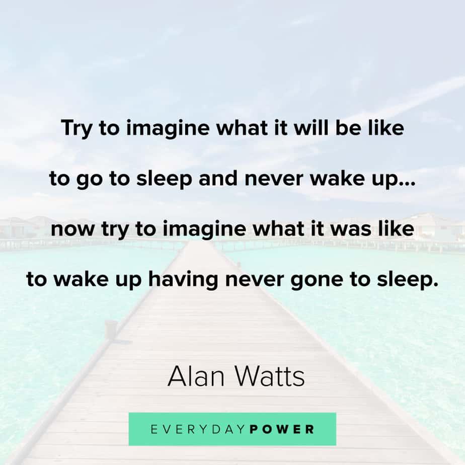 Alan Watts Quotes on imagination
