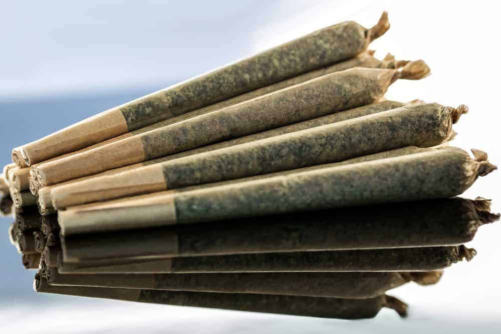 The Simple Guide to Rolling Joints & Blunts