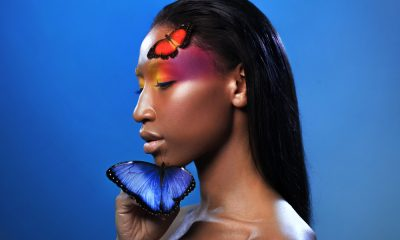 95 Butterfly Quotes Honoring Your Own Metamorphosis
