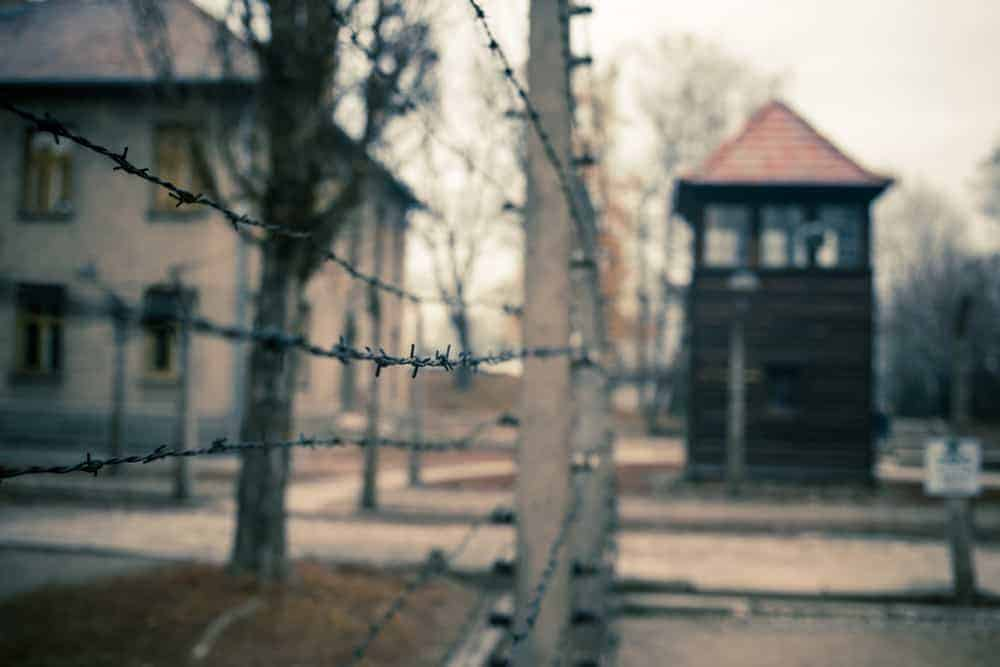 Holocaust Quotes for Remembering