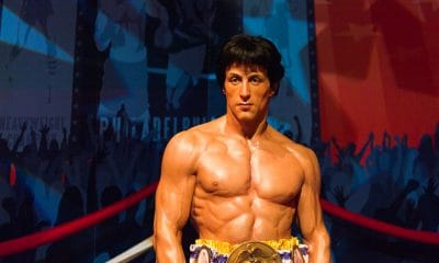 70 Inspirational Rocky quotes about life and fighting