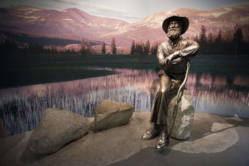 125 Best John Muir Quotes on the Mountains of Life