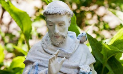 50 St. Francis of Assisi Quotes from the Patron Saint for Ecologists